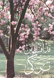 Bergembiralah Orang Yang Membersihkan Hatinya di Ramadhan